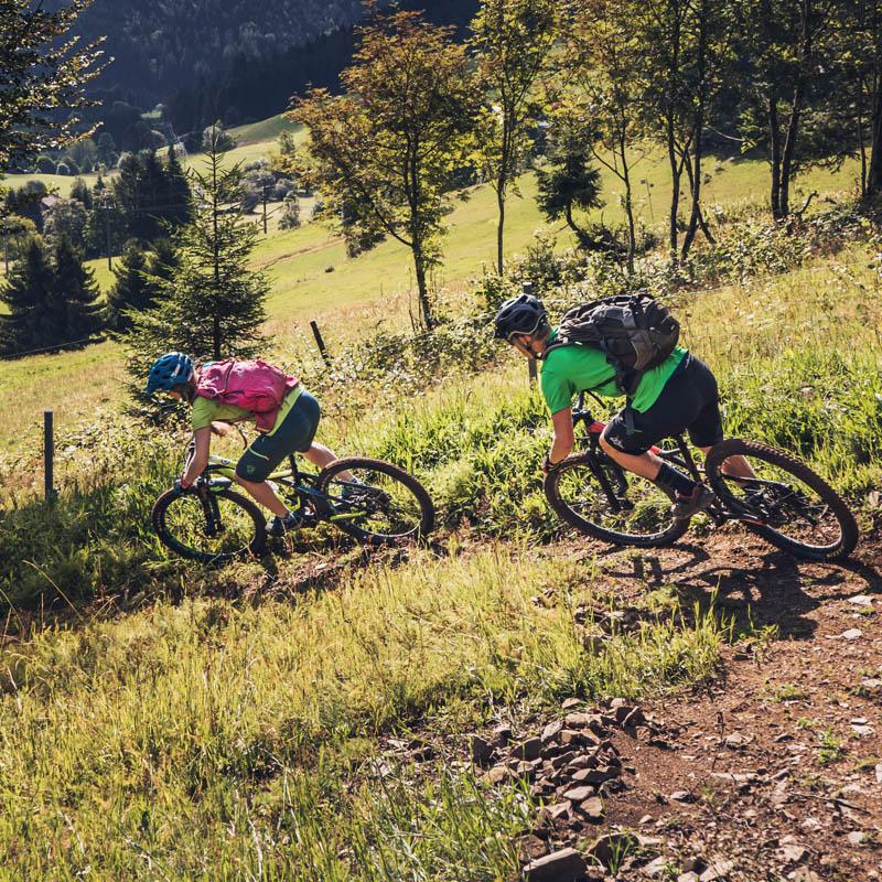E Bike Mountainbike Schwarzwald