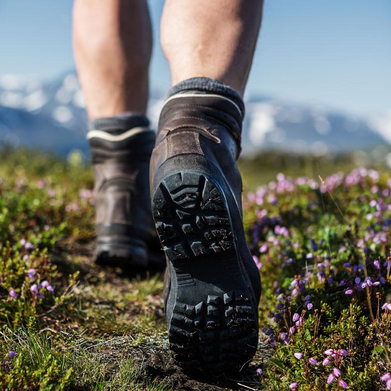 Wandern Feldberg Schwarzwald